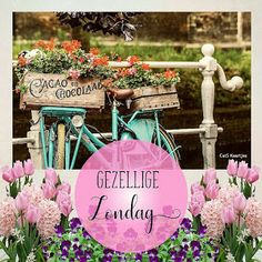 Good Morning Cards, Good Night, Qoutes, Table Decorations, Sunday, Tips, Flowers, Dawn, Balcony