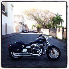 LOVE :)  Fat Bob by Harley Davidson