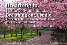 Mindfulness Coaching Quotes. QuotesGram