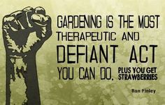 Haven't watched the video but I am slightly fascinated by the idea of gardening as an act of revolution. Pinning for later :)
