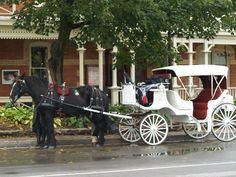 Niagara on the Lake. Love the old world charm of this trendy spot