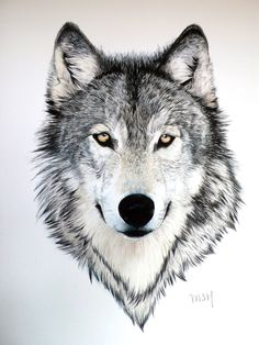 wolf with bright yellow eyes. - Gray wolf with bright yellow eyes. -Gray wolf with bright yellow eyes. - Gray wolf with bright yellow eyes. Wolf Tattoos, Animal Tattoos, Body Art Tattoos, Horse Tattoos, Eagle Tattoos, Sleeve Tattoos, Wolf Tattoo Design, Tattoo Designs, Wolf Design