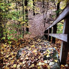 Chuckery Trail @ Cascade Valley Metro Park, Photo by zaklanobitch