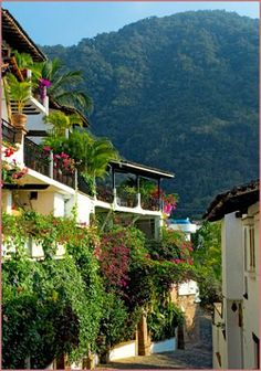 #Puerto Vallarta #Mexico #Vacation #Rental Private Villa with private pool and spa