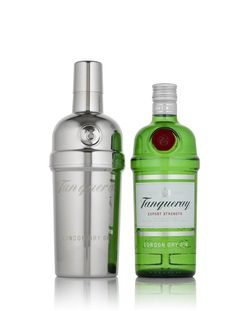 Bottle of Tanqueray gin and a snazzy stainless steel, fully functional three piece cocktail shaker