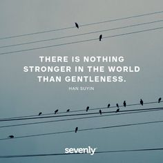 there is nothing stronger in the world than gentleness