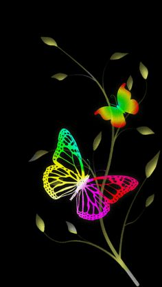 Download Animated 360x640 «butterflie» Cell Phone Wallpaper. Category: Abstract