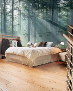 Glass Wall Bedroom, Sweden Bedroom Wall, Home Bedroom, Bedroom Decor, Forest Bedroom, Bed Room, Design Bedroom, Modern Bedroom, Nature Bedroom, Light Bedroom