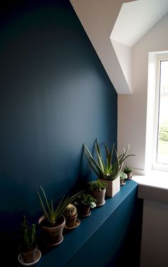 makeover landing, stairway, entry jungle urban plants color wall green blue renovation house succe-sur-erdre the beautiful architecture Stéphanie Durand Nantes Paint Colors For Living Room, Paint Colors For Home, Bedroom Colors, Bedroom Decor, Wall Colors, House Colors, Ornamental Plants, Interior Plants, Room Setup