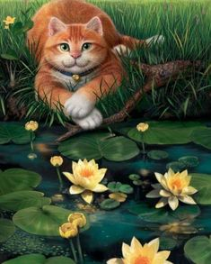"Mosky Cat ""Waterlily"" Art Print by moskycat I Love Cats, Cute Cats, Poster Prints, Art Prints, Huckleberry, Cat Paws, Water Lilies, Art Images, Cats And Kittens"