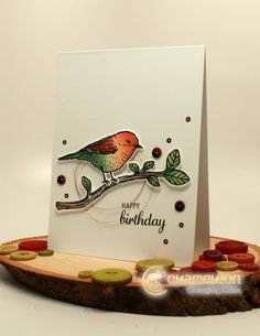 "Stampin Up ""Best Birds"" + Chameleon Pens (7.15.16)"