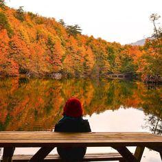 Yedigöller Milli Parkı   Bu fotoğraf bu manzarayı şöyle oturupta izlemek isteyenlere gelsin!   Fotoğrafı gönderen: Mbrt