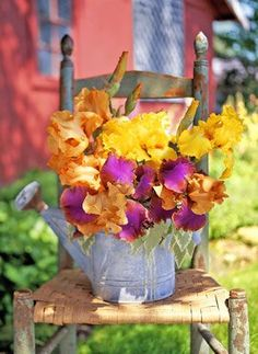 Plant Flowers in Vintage Containers    When bearded irises unfurl their pencil-thin buds, you'll fall in love with the color and bloom size. For a sensational container garden, fill a vintage watering can with a variety of shades—purple, lavender, yellow, and orange—and enjoy the striking palette wherever there's a space that needs livening up.