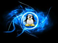 Top Seven LINUX tips and tricks for Beginners