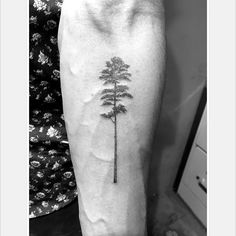 Longleaf pine! #singleneedle #tattoosofinstagram #pine #pinetree #nature #tree #fineline