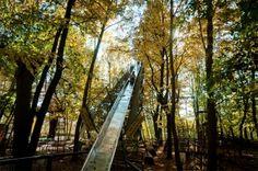 Man Builds DIY Amusement Park In Italian Forest                                                                                             ...