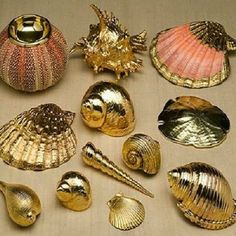gold dipped seashells I will take one of eacgold dipped seashells gold painted gold accents would make a cute charmGold -dipped shells - [ ] Sand 'N Sea Properties LLC, Galveston, TXSpray paint them and hang them as sun catchers hanging from yarn Seashell Painting, Seashell Art, Seashell Crafts, Beach Crafts, Seashell Ornaments, Shell Jewelry, Diy Jewelry, Jewelry Making, Jewelry Ideas