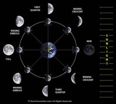 Things that make you go hmmm...using the moon as a model for your 28-day cycle