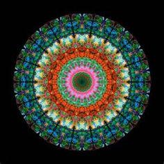 sharoncummings art - - Yahoo Image Search Results