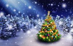 Życzenia na Boże Narodzenie 2017 i Nowy Rok #Święta, #Życzenia, #dobreProgramy