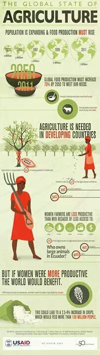 Estado de la agricultura