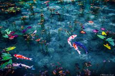 11 Photos That Prove Japan Is The Most Beautiful Place On Earth