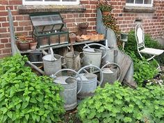Ronny is telling you:'im Garten Ehler fotografiert' Watering Cans, Canning, Plants, Viajes, Home Canning, Conservation
