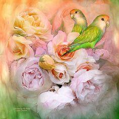Carol Cavalaris - Love Among The Roses