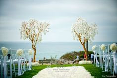 Karen Tran Florals - Keely and Louis' Seaside wedding at L'auberge Del Mar   San Diego Wedding Blog