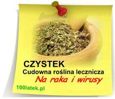 Czystek na raka i wirusy Hair Beauty, Polish, Herbs, Beef, Health, Food, Therapy, Meat, Vitreous Enamel