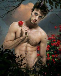 Pan's rose