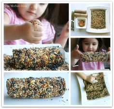 An EASY Bird Feeder Craft!  Just use peanut butter, a toilet paper roll and bird seed! Hang on a tree branch and feed the birds in the winter!