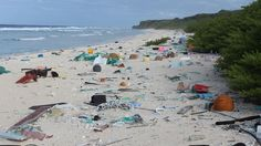 Millions Of Pieces Of Plastic Are Piling Up On An Otherwise Pristine Pacific Island  http://www.npr.org/sections/thetwo-way/2017/05/15/528470657/millions-of-pieces-of-plastic-are-piling-up-on-otherwise-pristine-pacific-island?utm_campaign=crowdfire&utm_content=crowdfire&utm_medium=social&utm_source=pinterest