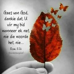 Biblical Inspiration, Daily Inspiration Quotes, Serious Quotes, Goeie More, Afrikaans Quotes, Free To Use Images, Thank You Jesus, Thy Word, Gratitude Quotes