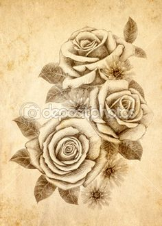 Freehand drawing rose 02