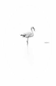 Minimal Flamingo