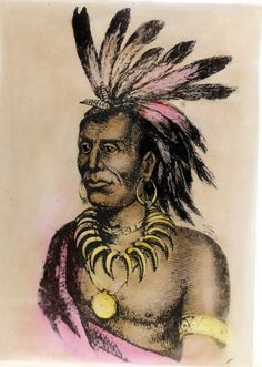 chief little turtle. i am related to this man