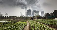 Air Quality Is Worsening for Half of the World's People | NRDC Energy Crisis, Gas Pipeline, About Climate Change, Fire Powers, Coastal, Around The Worlds, Plants, Outdoor, China
