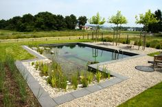 Natural Swimming Pools, Outside Living, Pool Landscaping, Water Features, Pond, Garden Sculpture, New Homes, Backyard, Landscape