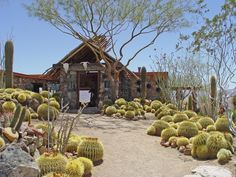 Garden created by landscape design team of Gino Dreese and Troy Williams, lovers of cactus and unconventional stonework, t Garden Design Calimesa, CA