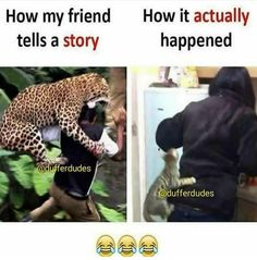 Most Hilarious Memes, Funny School Jokes, Silly Memes, Crazy Funny Memes, Funny Relatable Memes, Funny Photos, Best Funny Pictures, Gallows Humor, Desi Jokes