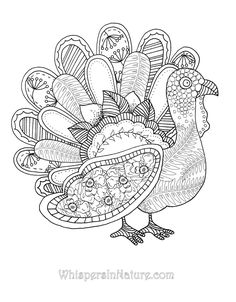 Turkey Adult Coloring PagesAdultPrintable Coloring Pages Free