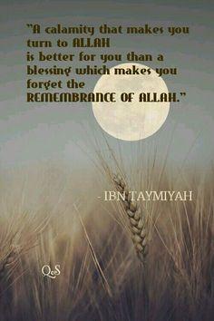 IBN TAYMIYAH