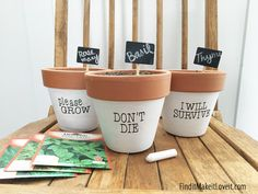 Funny Painted Planter Pots Have you ever heard that if you talk to your plants they'll grow better? Well today we have some funny painted planter pots to take it one step further! We put carefully thought out words/plant motivation directly on the pot.