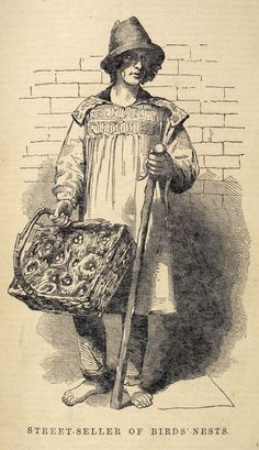 A street seller of birds' nests, from Henry Mayhew's London Labour and the London Poor, BIRDS NEST SELLER - sold bird nests collected from the wild complete with eggs which were then hatched by domestic birds and sold as pets Victorian Life, Victorian London, London History, British History, Medieval Market, Steampunk Festival, Alternate History, Old London, London Life
