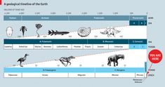 Infographics of the day - A geological timeline of the Earth