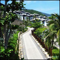 #Resort #Paradise in #Vietnam Aerial Images, Southeast Asia, Switzerland, Fields, Vietnam, Paradise, Sidewalk, Side Walkway, Walkway