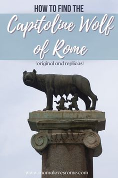 The she wolf is the symbol of Rome: discover where to see her in this free guide by a local (hint: there is more than one Capitoline Wolf but only one is the original!) Italy Travel Tips, Rome Travel, Travel Ideas, Travel Inspiration, Rome Attractions, Rome Hotels, She Wolf, European Destination, Visit Italy