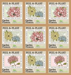 From the MS American Made finalists: Plant Stamps are seeded stickers that grow into wildflowers. Genius!