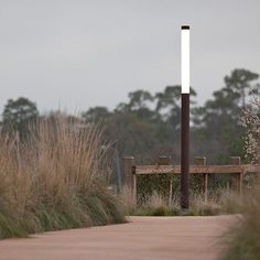 Light Column Pedestrian Lighting: durable, minimalist fixtures that integrate seamlessly with natural landscapes